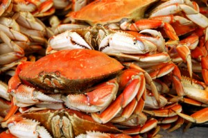 iStock_000002700090XSmall_crabs